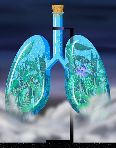 Lungs illustration for The New Yorker by Alexander Glandien